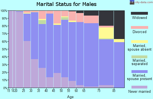Zip code 60193 marital status for males