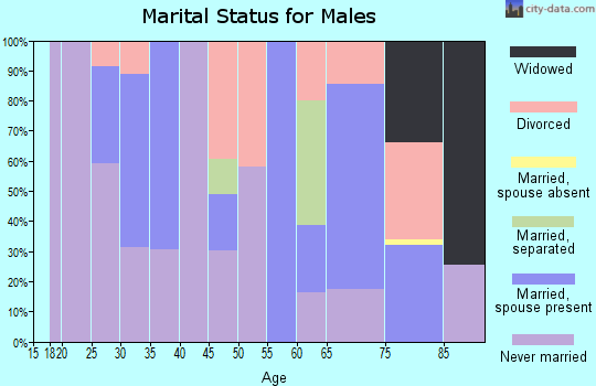Zip code 60301 marital status for males