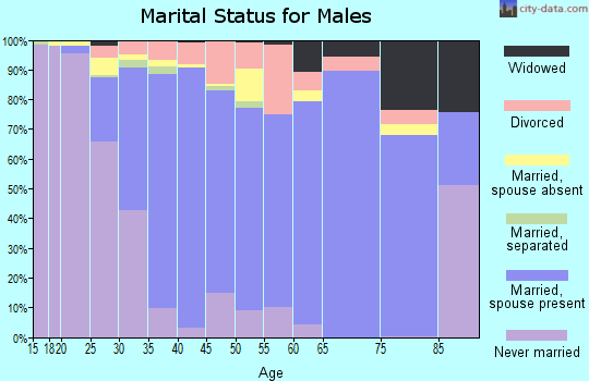 Zip code 60446 marital status for males