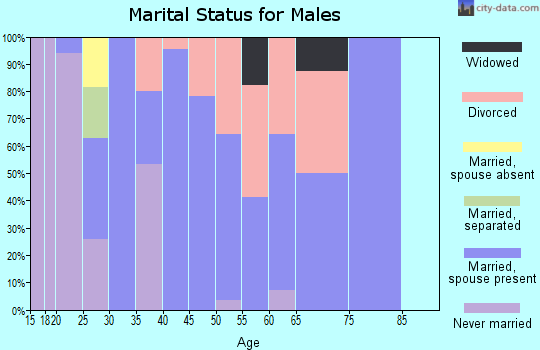 Zip code 60470 marital status for males