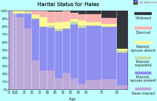 Zip code 60634 marital status for males