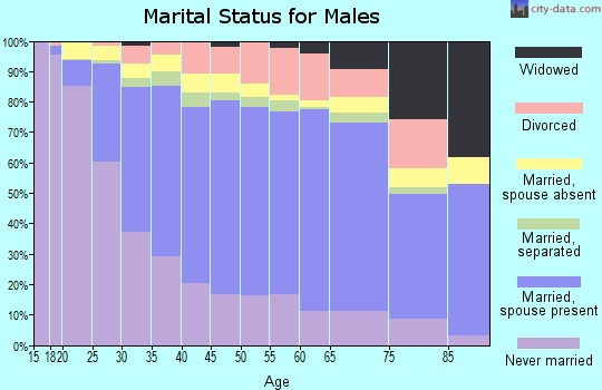 Zip code 60804 marital status for males
