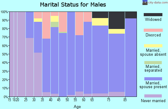 Zip code 60940 marital status for males