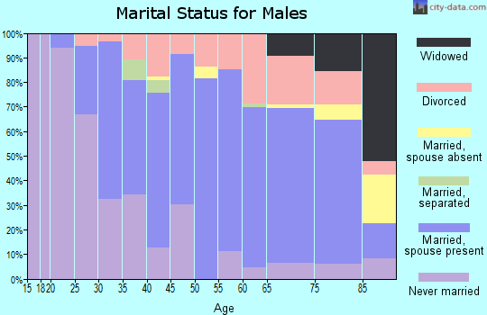 Zip code 60950 marital status for males