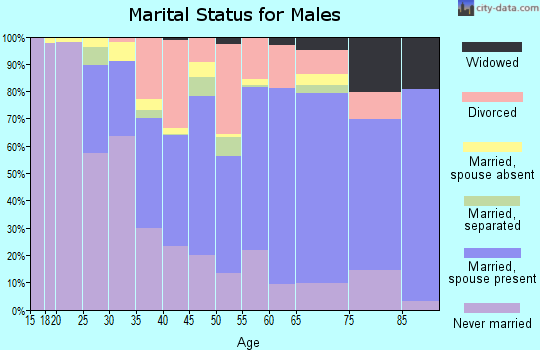 Zip code 61102 marital status for males