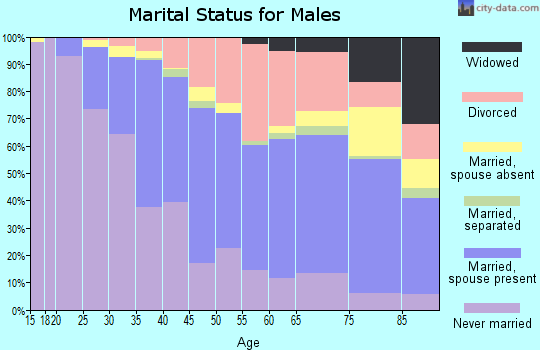 Zip code 61103 marital status for males