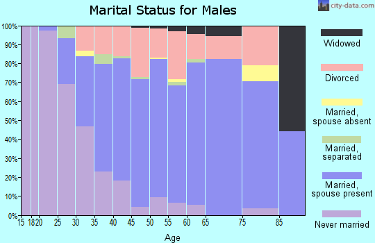 Zip code 61115 marital status for males