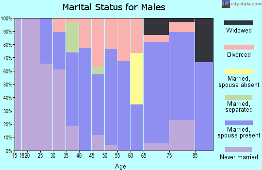 Zip code 61360 marital status for males