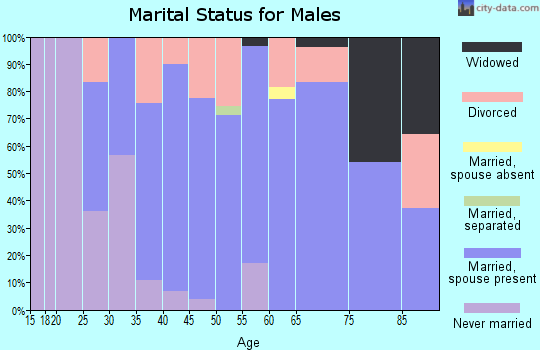 Zip code 61427 marital status for males