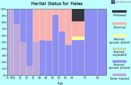 Zip code 61447 marital status for males