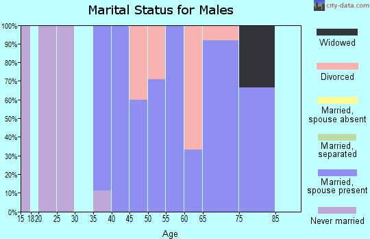 Zip code 61845 marital status for males