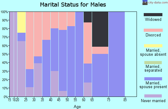 Zip code 62551 marital status for males