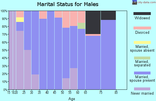 Zip code 62807 marital status for males