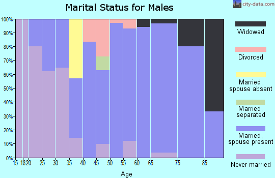 Zip code 62853 marital status for males