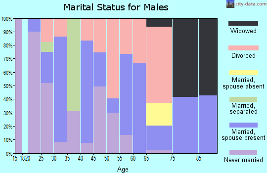 Zip code 62982 marital status for males