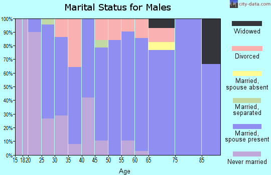 Zip code 63019 marital status for males