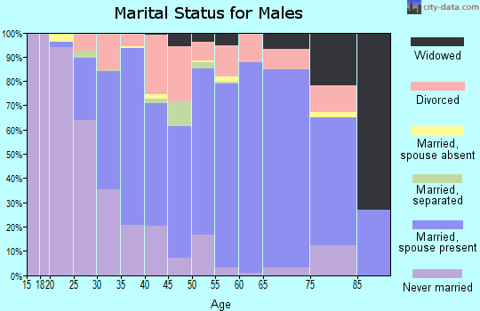 Zip code 63020 marital status for males