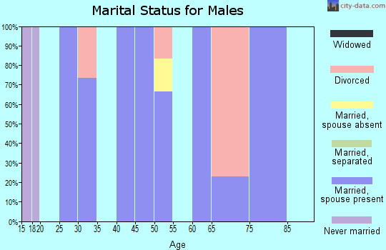 Zip code 63030 marital status for males