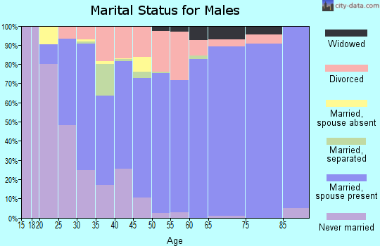 Zip code 63050 marital status for males