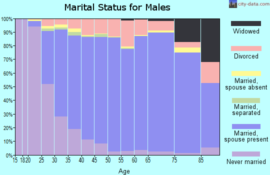 Zip code 63376 marital status for males