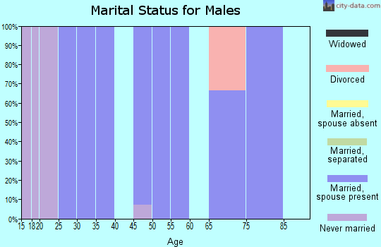 Zip code 63381 marital status for males