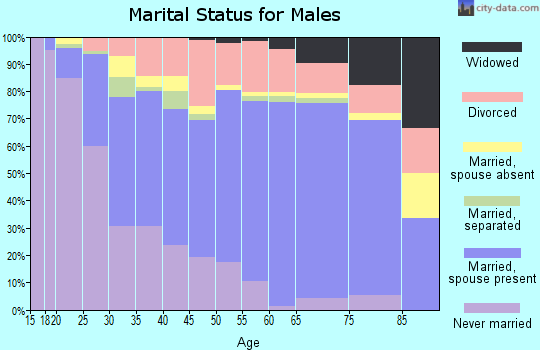 Zip code 63401 marital status for males