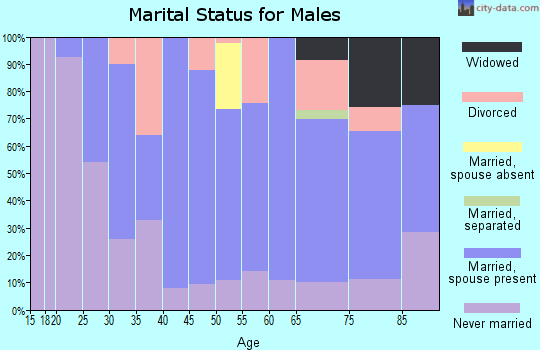 Zip code 63435 marital status for males