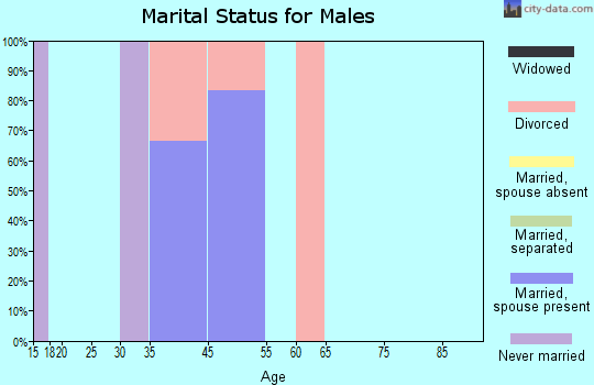 Zip code 63850 marital status for males