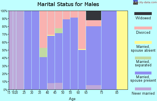 Zip code 64011 marital status for males