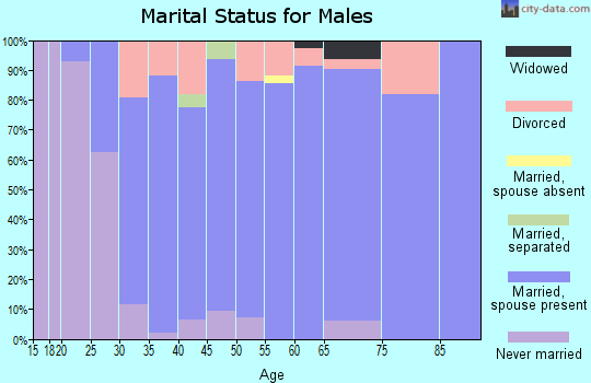 Zip code 64060 marital status for males