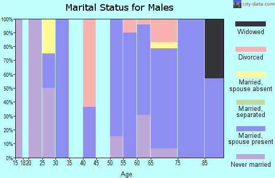 Zip code 64431 marital status for males