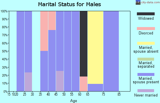 Zip code 64438 marital status for males