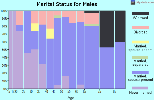 Zip code 64742 marital status for males