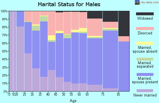 Zip code 64801 marital status for males