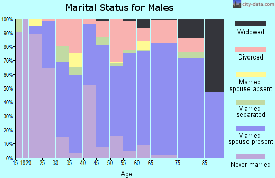 Zip code 65020 marital status for males