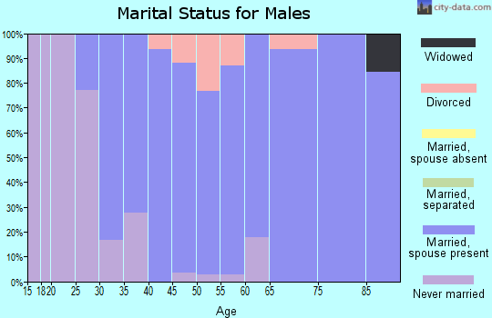 Zip code 65035 marital status for males