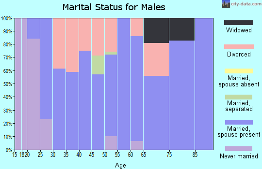 Zip code 65462 marital status for males