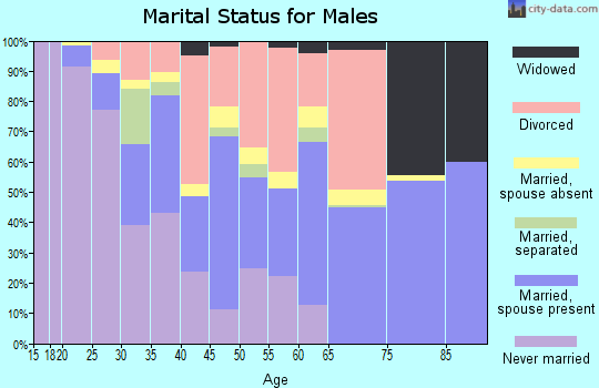 Zip code 65542 marital status for males