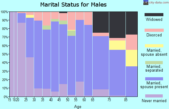 Zip code 65559 marital status for males