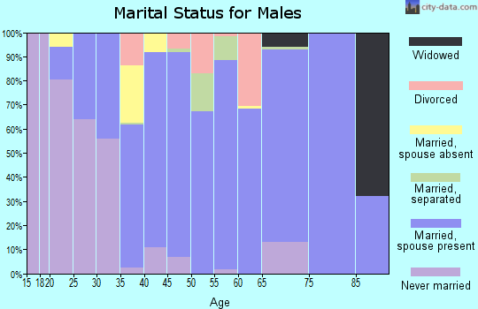 Zip code 65667 marital status for males