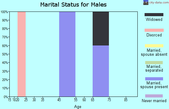 Zip code 65701 marital status for males