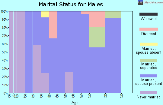 Zip code 65756 marital status for males