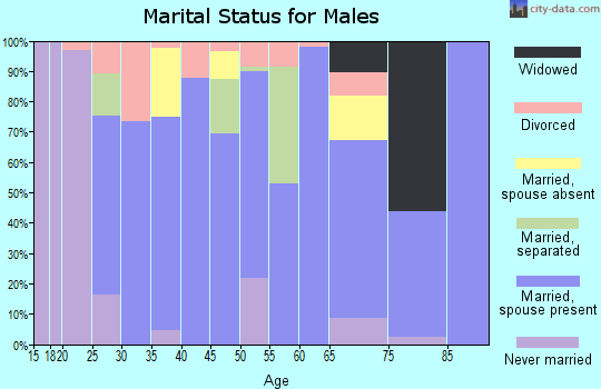 Zip code 65770 marital status for males