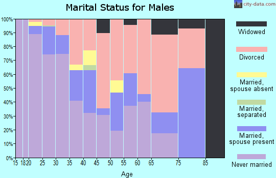 Zip code 65806 marital status for males