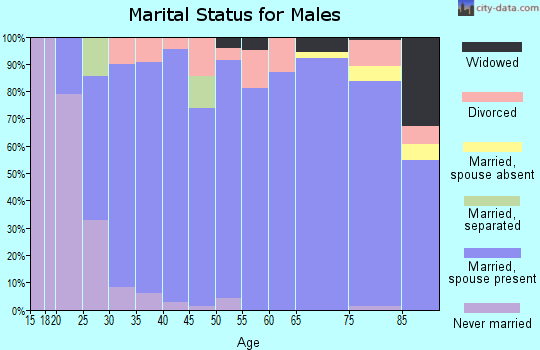 Zip code 65809 marital status for males