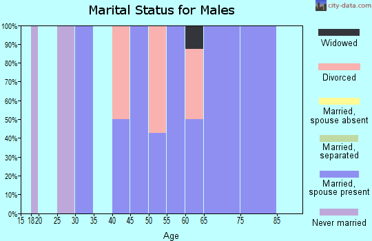 Zip code 68332 marital status for males