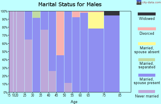 Zip code 68339 marital status for males