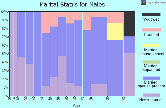 Zip code 68713 marital status for males
