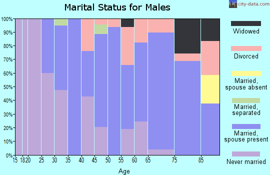 Zip code 68783 marital status for males
