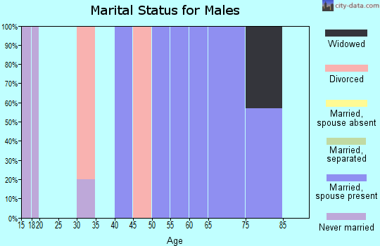 Zip code 69142 marital status for males